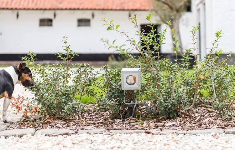 elektrische installatie woning buitenverlichting